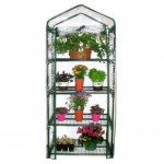 Mini Plastic Greenhouse Kit