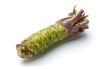 How to Grow Wasabi