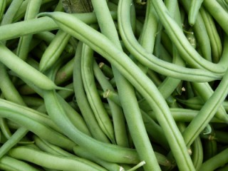 How to Grow Green Beans in Containers