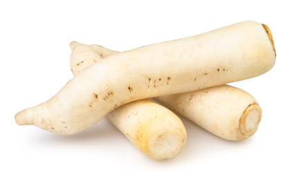 How to Grow Daikon Radishes