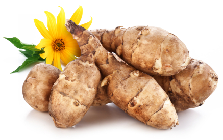 How to Grow Jerusalem Artichokes