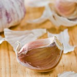 When to Plant Garlic